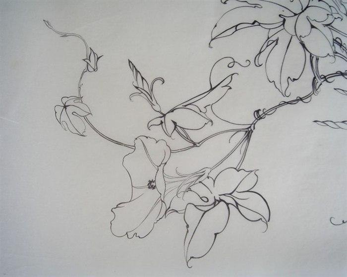 初中春天手绘图片