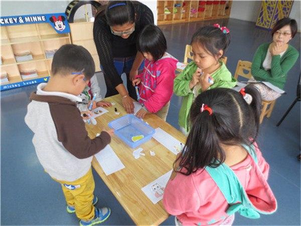 昆山高新区美陆幼儿园中一班-班级