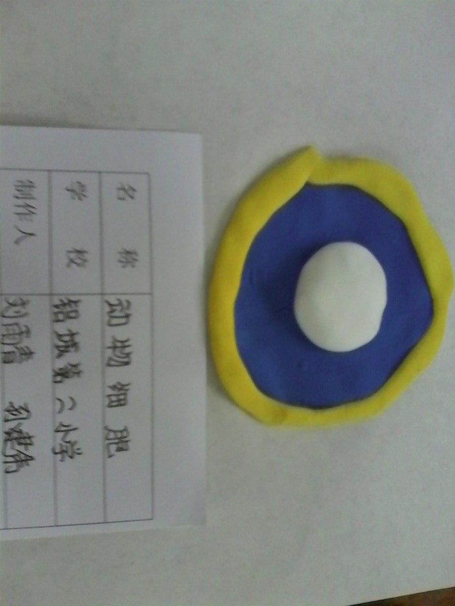 二动物细胞模型制作