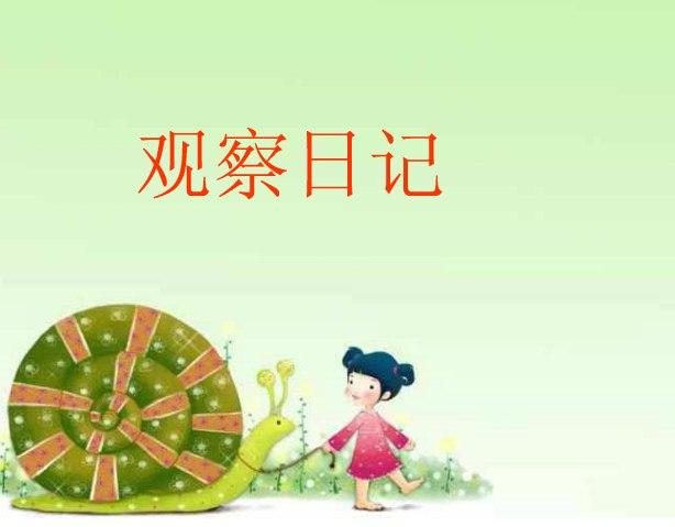 观察日记例文 蓝色梦想(2020级1班)-重庆市石柱师范